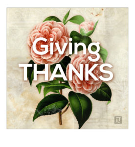 JLT Graphic Design - Thanks Giving Post